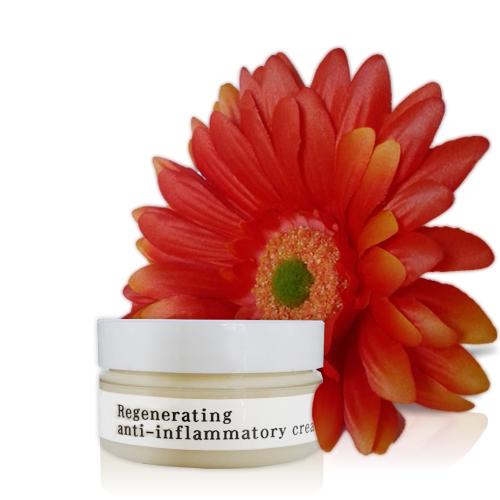 Regenerating Anti-Inflammatory Cream - Custom Blending | Facial Spa De Larissa - Age in Reverse